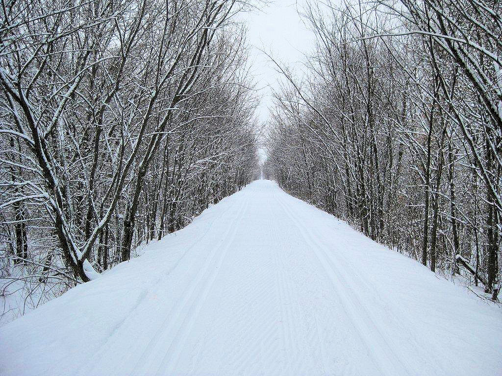 Stower Seven Lakes Trail Groomed For Cross Country Skiing