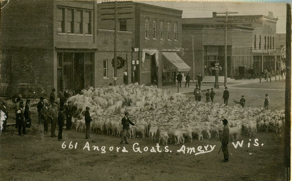 Amery - Goats on Main Street