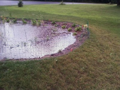 A below ground rain garden