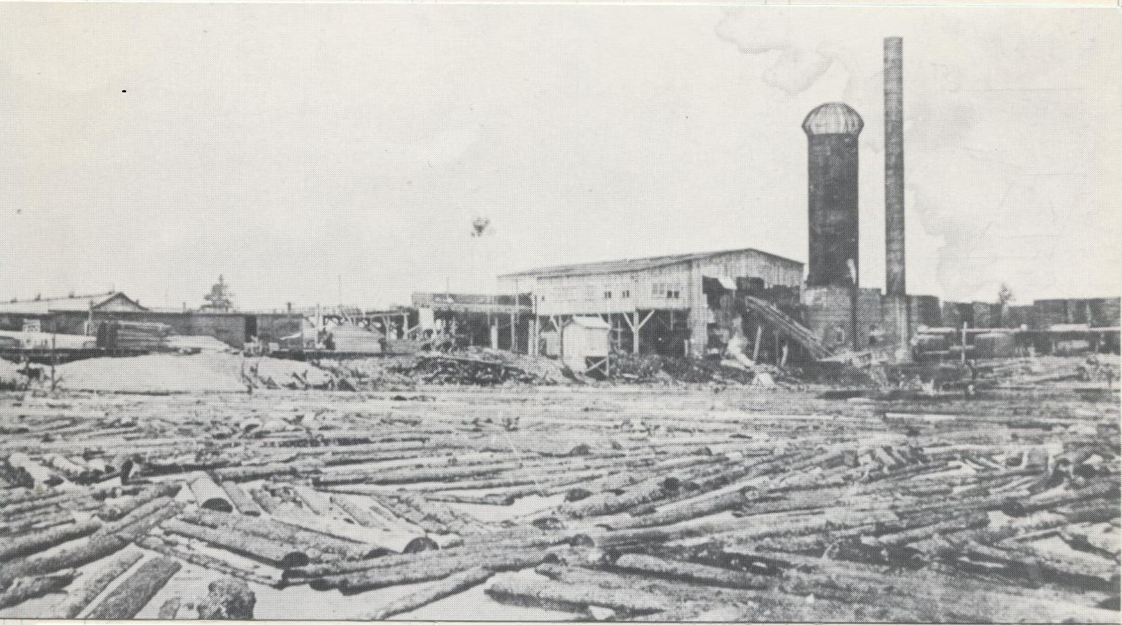Business - Lumber Mill 2b